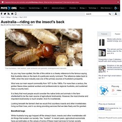 Australia—riding on the insect's back