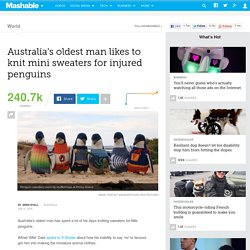 Australia's oldest man likes to knit mini sweaters for injured penguins