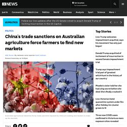 China's trade sanctions on Australian agriculture force farmers to find new markets