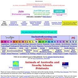 Australian Animal Printouts