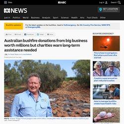 Australian bushfire donations from big business worth millions but charities warn long-term assistance needed