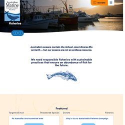 Fisheries Campaign - Australian Marine Conservation Society