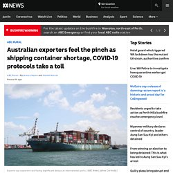Australian exporters feel the pinch as shipping container shortage, COVID-19 protocols take a toll