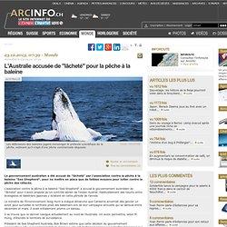 """L'Australie accusée de """"lâcheté"""" pour la pêche à la baleine - Monde"""