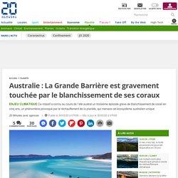 Australie: La Grande Barrière est gravement touchée par le blanchissement de ses coraux