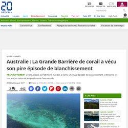 Australie: La Grande Barrière de corail a vécu son pire épisode de blanchissement