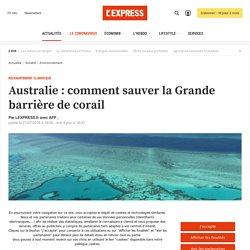 Australie : comment sauver la Grande barrière de corail