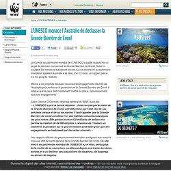 L'UNESCO menace l'Australie de déclasser la Grande Barrière de Corail