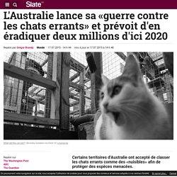 L'Australie lance sa «guerre contre les chats errants» et prévoit d'en éradiquer deux millions d'ici 2020