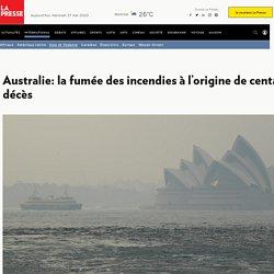 Australie: la fumée des incendies à l'origine de centaines de décès