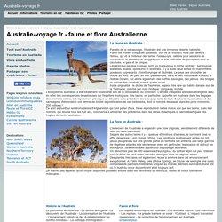 Faune et Flore Australienne: animaux et plantes en Australie