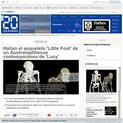 Hallan el esqueleto 'Little Foot' de un Australopithecus contemporáneo de 'Lucy'