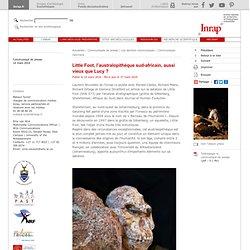 Actualités archéologie : Little Foot, l'australopithèque sud-africain, aussi vieux que Lucy ?