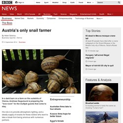 Austria's only snail farmer