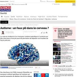 Autisme : un faux pli dans le cerveau ?