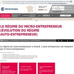 L'auto-entrepreneur, l'auto-entreprise, guide de l'auto-entrepreneur, auto entrepreneur, régime, statut - Portail CCI