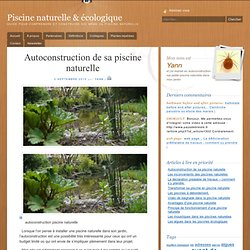 Autoconstruction de sa piscine naturelle