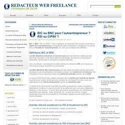 BIC ou BNC pour l'autoentrepreneur ? RSI ou CIPAV ?