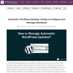 Automatic WordPress Updates: Guide to Configure and Manage effortlessly