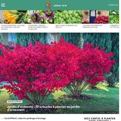 Jardin d'automne : 10 arbustes à planter au jardin d'ornement