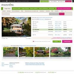 Maison De Thé En Automne Japonais De Jardin Photo stock - Image: 47412586