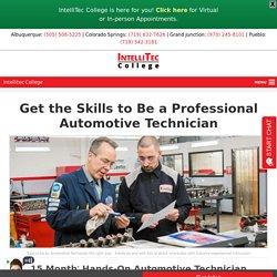 Professional Automotive Technician