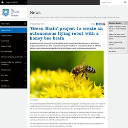 'Green Brain' project to create an autonomous flying robot with a honey bee brain - News releases - News