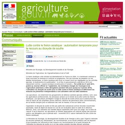 MAAF 10/09/13 Lutte contre le frelon asiatique : autorisation temporaire pour le recours au dioxyde de soufre