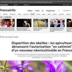 """Disparition des abeilles: les apiculteurs dénoncent l'autorisation """"en catimini"""" d'un nouveau néonicotinoïde en France"""