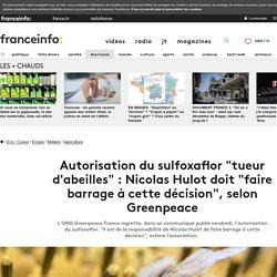 """Autorisation du sulfoxaflor """"tueur d'abeilles"""" : Nicolas Hulot doit """"faire barrage à cette décision"""", selon Greenpeace"""