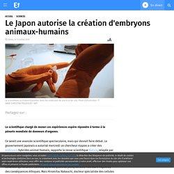 Le Japon autorise la création d'embryons animaux-humains
