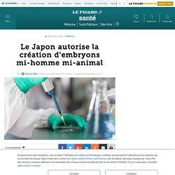 Le Japon autorise la création d'embryons mi-homme mi-animal