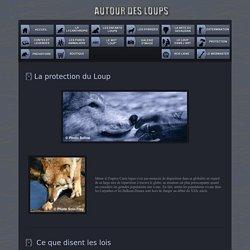 La Protection et la défense des loups