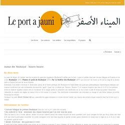 """Autour des """"Roubaiyat"""" : bizarre, bizarre… - Le port a jauni"""