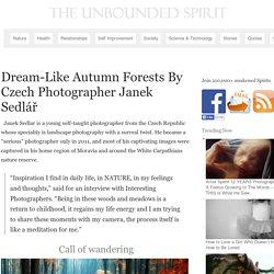 Dream-Like Autumn Forests By Czech Photographer Janek Sedlář