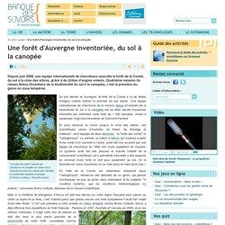 biodiversité forêt d'Auvergne du sol à la canopée