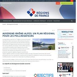 Auvergne-Rhône-Alpes: un plan régional pour les pollinisateurs