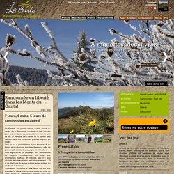 AUVERGNE - Randonnée en liberté dans les Monts du Cantal - Massif central - La Burle, randonnées et voyages