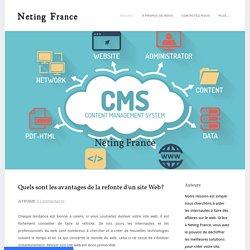 Quels sont les avantages de la refonte d'un site Web? - Neting France