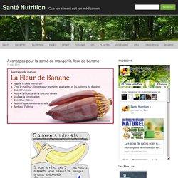 Avantages pour la santé de manger la fleur de banane