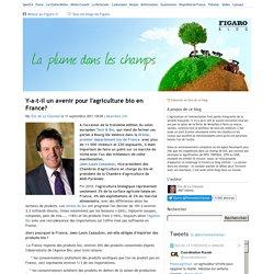 Y-a-t-il un avenir pour l'agriculture bio en France? — La plume dans les champs