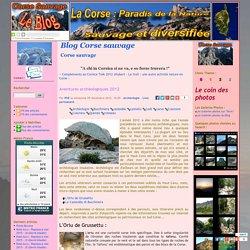 Aventures archéologiques 2012 - Blog Corse sauvage