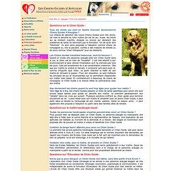 Chien guide d'aveugle : FAQ sur les Chiens guides d'aveugles