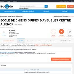 ECOLE DE CHIENS GUIDES D'AVEUGLES CENTRE ALIENOR (MERIGNAC) Chiffre d'affaires, résultat, bilans sur SOCIETE.COM - 499397461