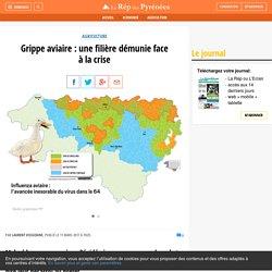 Grippe aviaire : une filière démunie face à la crise - La République des Pyrénées.fr
