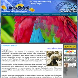Avian Biotech - Disease Testing