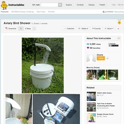Aviary Bird Shower (with Pictures)