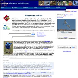 Avibase - The World Bird Database