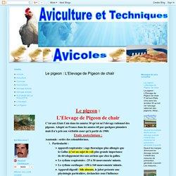 AVICULTURE - ELEVAGE -AVICOLE: Le pigeon : L'Elevage de Pigeon de chair