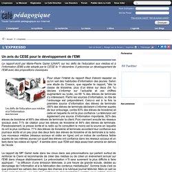 Un avis du CESE pour le développement de l'EMI